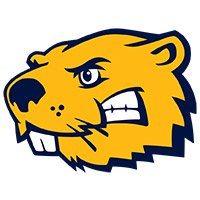Buena Vista University - Men's Basketball