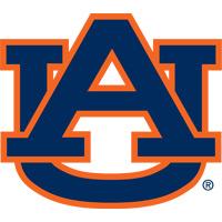 Auburn Baseball Camps