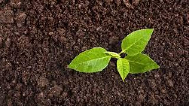 World Soil Day 2018 Observed On December 05