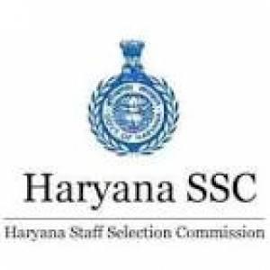 HSSC Clerk Final Result Out, Download Now At hssc.gov.in