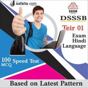 DSSSB Hindi Language Practice Questions