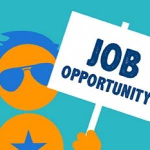 jobs 2018 safalta.com