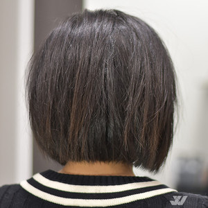 26708jesse wyatt chicago bob cut 2 22 18 6