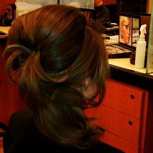 Portfolio hair updo