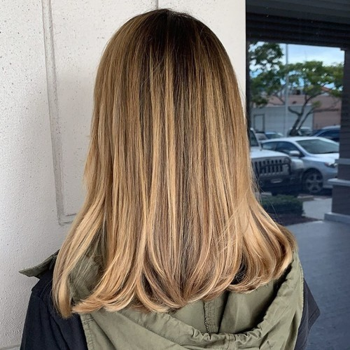 Ft. lauderdale balayage hair