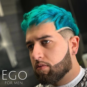 Orlando mens haircut and color 2