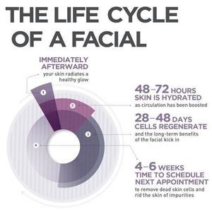 Life of a facial