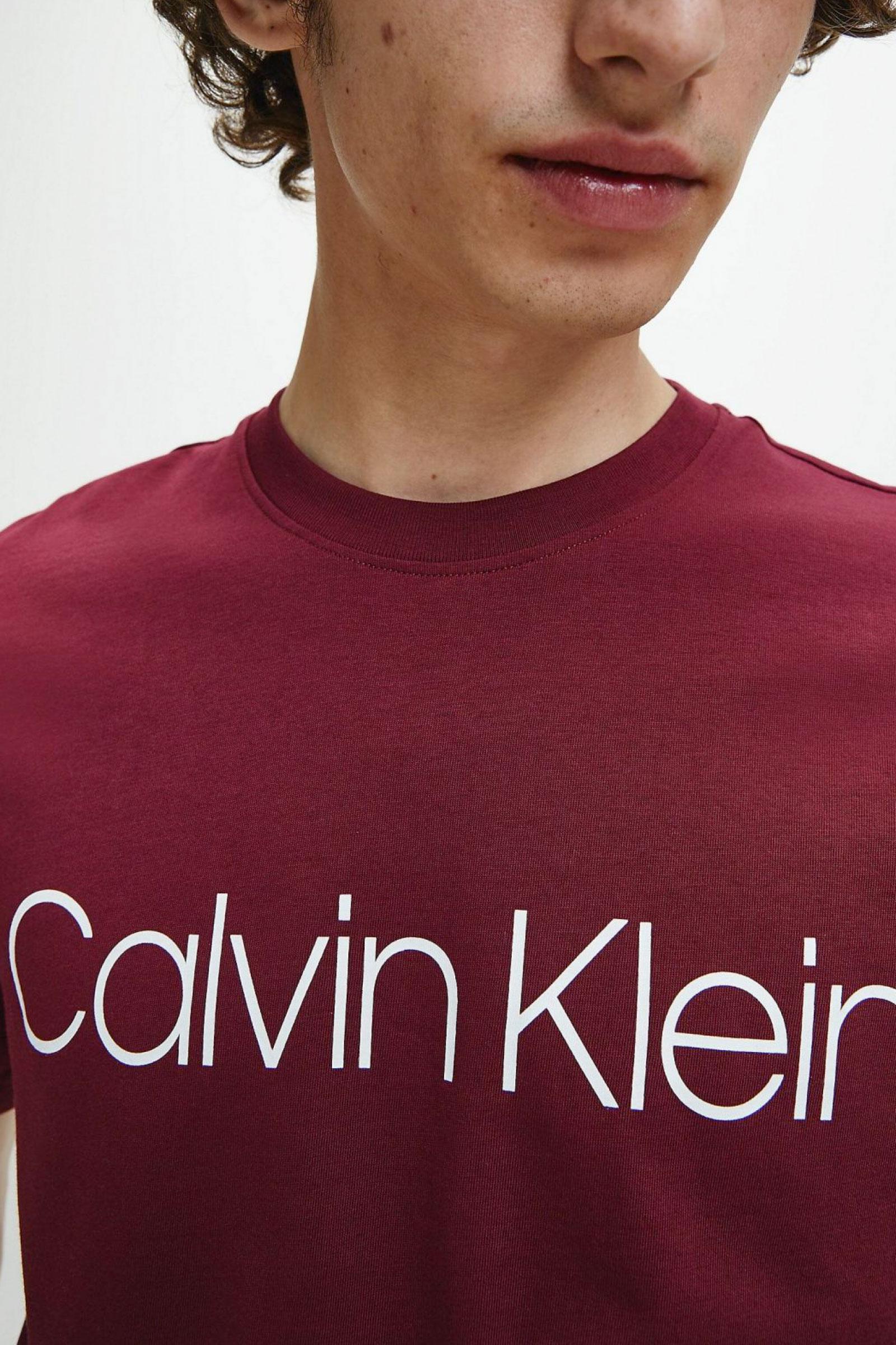 T-Shirt Uomo CALVIN KLEIN | T-Shirt | K10K103078XUU