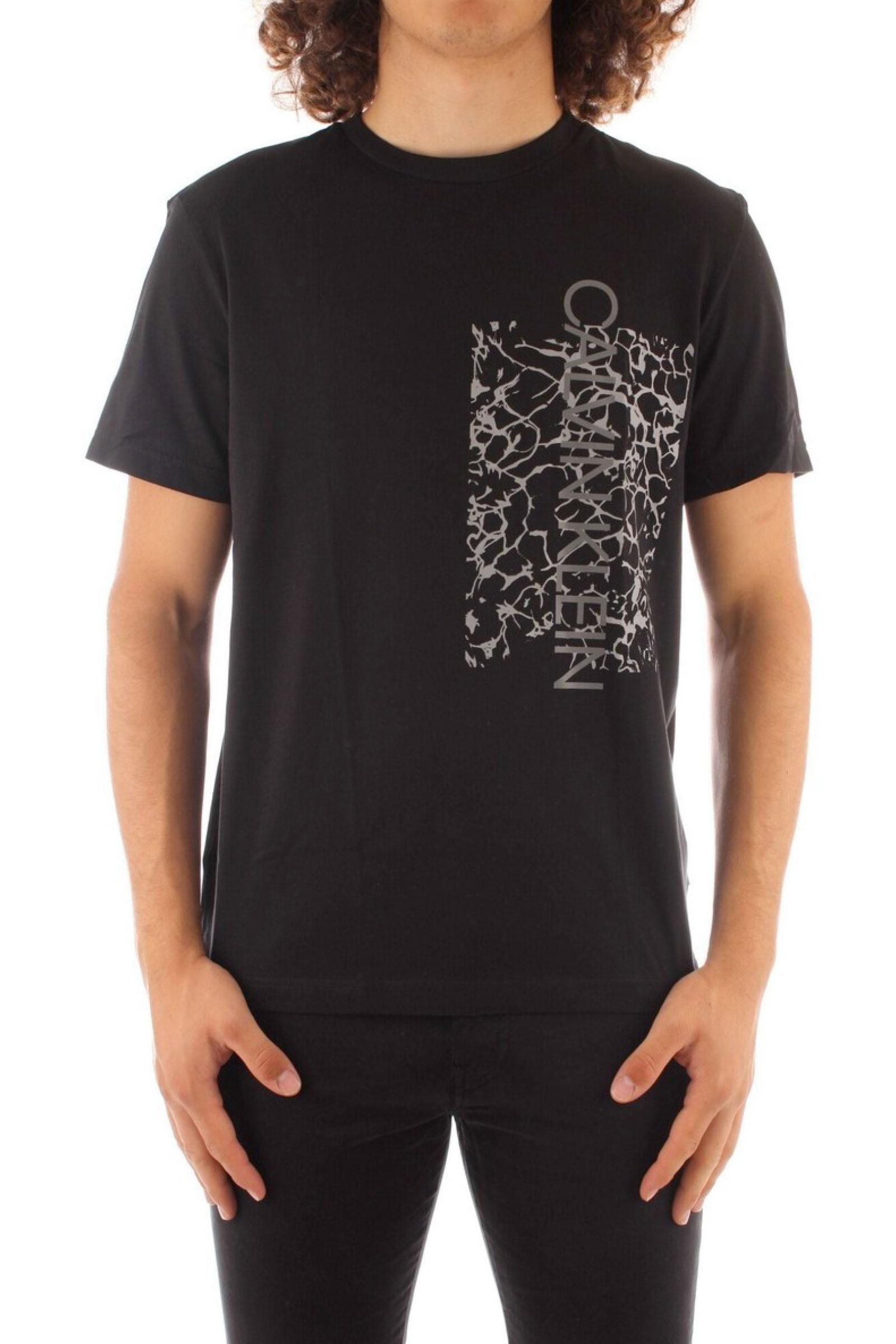 CALVIN KLEIN   T-Shirt   K10K107410BEH