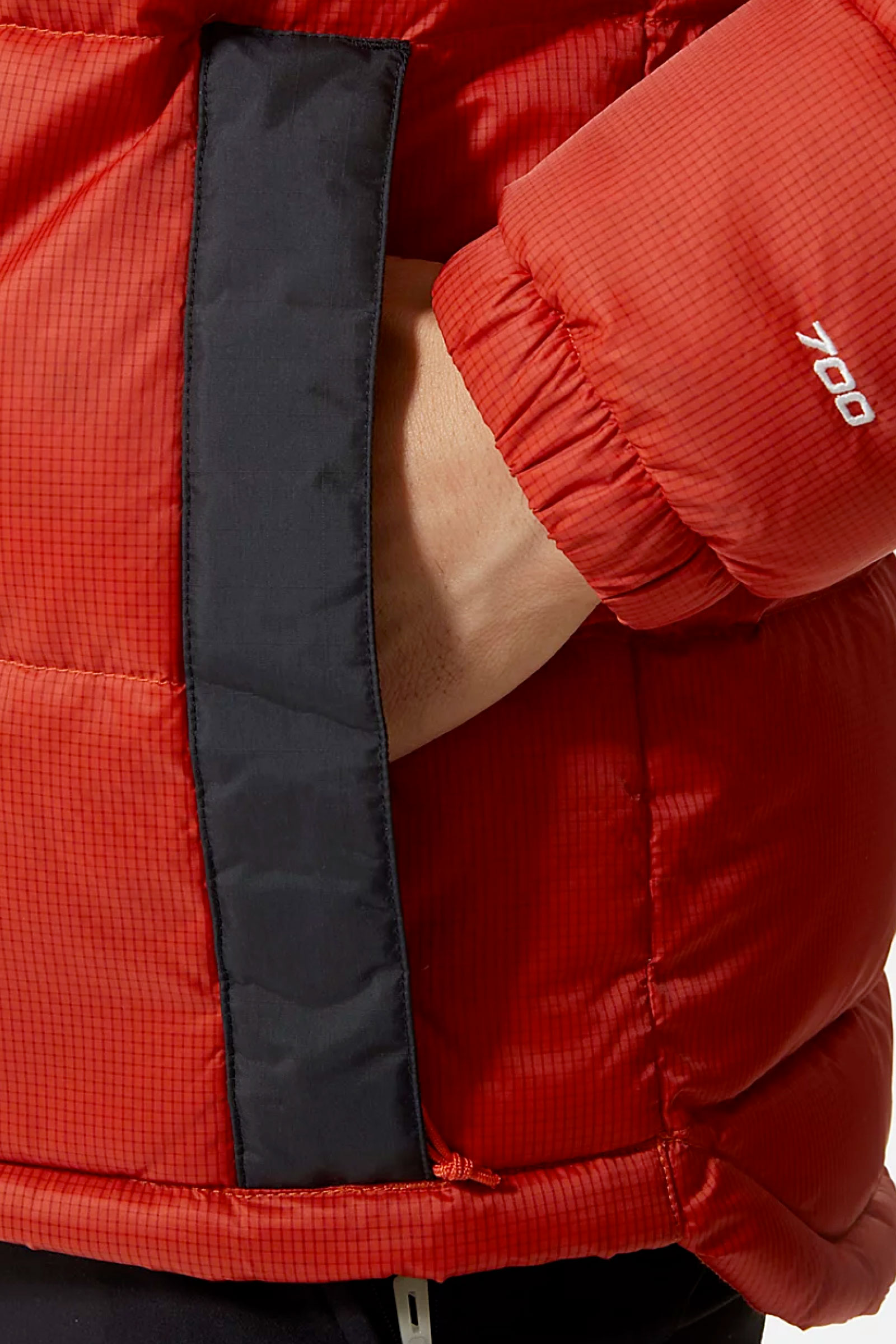 THE NORTH FACE | Jacket | NF0A4M9LT97