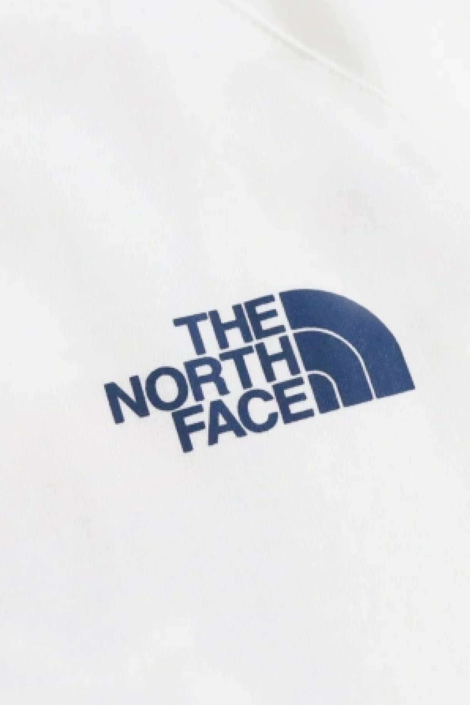 THE NORTH FACE T-Shirt Uomo THE NORTH FACE | T-Shirt | NF00CEQ80GT1