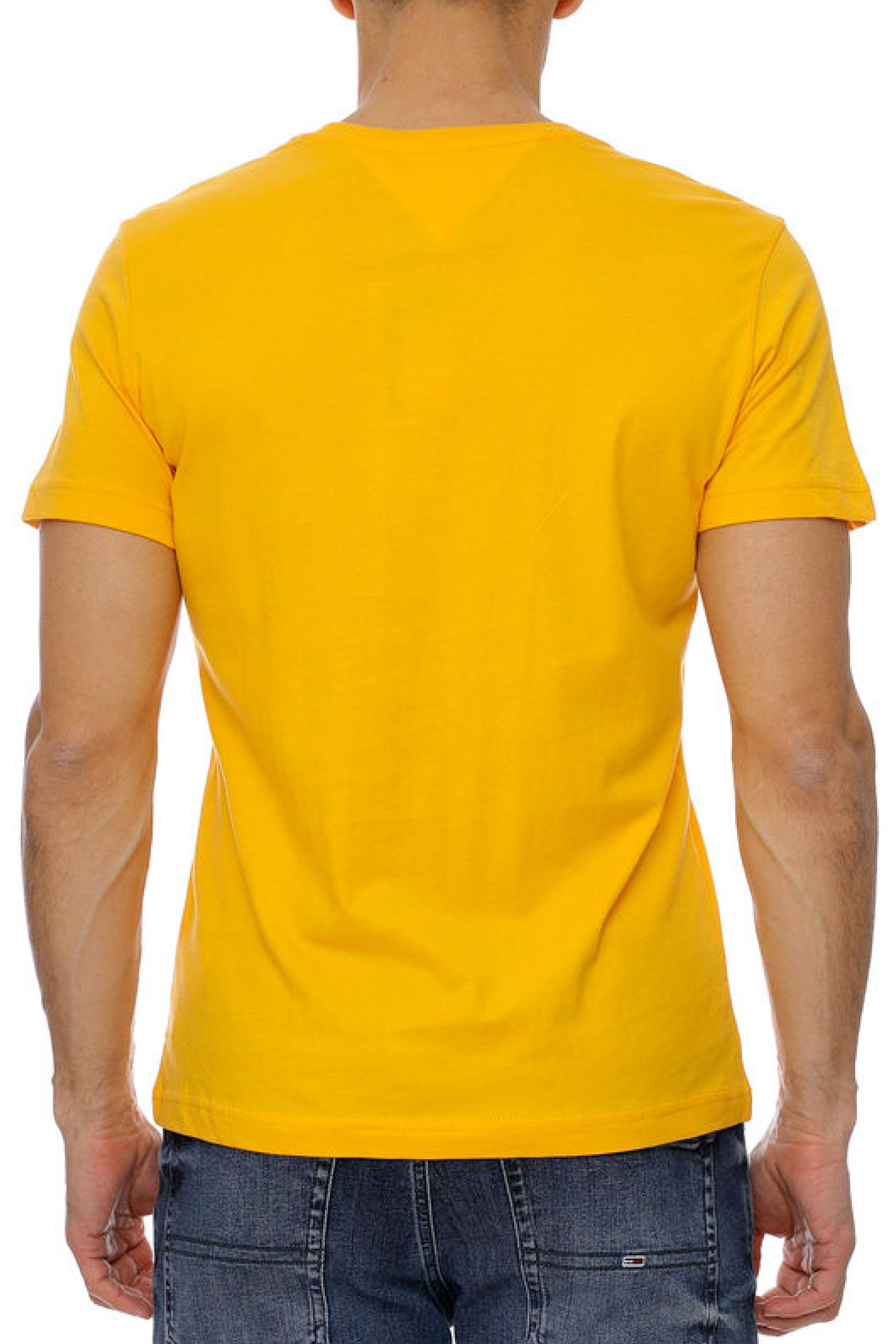 TOMMY JEANS | T-Shirt | DM0DM10243S00