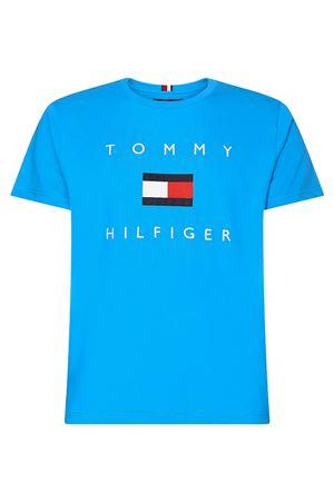 TOMMY HILFIGER Men's T-Shirt TOMMY HILFIGER   T-Shirt   MW0MW14313DYD