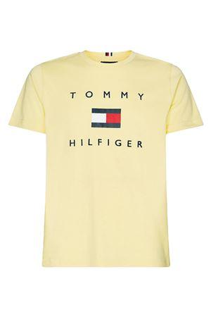 TOMMY HILFIGER Men's T-Shirt TOMMY HILFIGER | T-Shirt | MW0MW14313ZFB