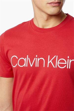 CALVIN KLEIN Men's T-Shirt CALVIN KLEIN | T-Shirt | K10K103078XA9