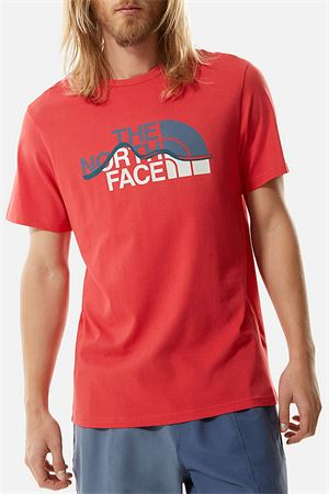 THE NORTH FACE | T-Shirt | NF00A3G2V341