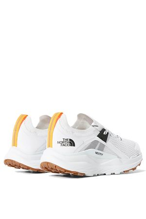 THE NORTH FACE | Shoes | NF0A4PFLLA91