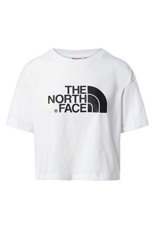 THE NORTH FACE | T-Shirt | NF0A4T1RFN41