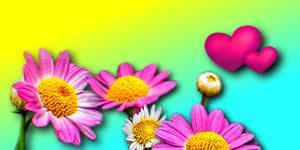 Moldura de Florzinhas Rosas e Coraçãozinhos. Faça a Sua!