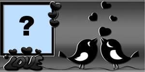 Qual foto do seu Albúm você colocaria nesta moldura de passarinhos?