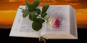 Quais amigos fazem parte do seu círculo de oração?