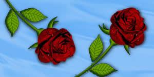 Collage hermosa con su foto 2 amigos y rosas rojas