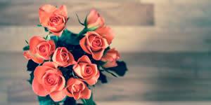 ¿A quién le pondrías a este hermoso ramo de rosas?