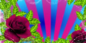 Montagem de Duas Fotos em um Lindo Albúm entre Rosas. Faça a Sua!