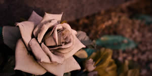 Crie um lindo video com suas fotos de casamento do seu álbum!