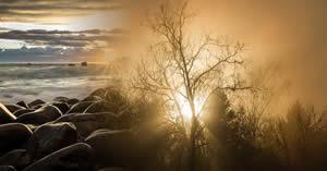 Qual versículo da Bíblia vai iluminar seu dia hoje?