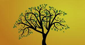 Quais amigos estão em sua árvore da vida?
