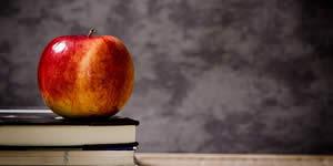 ¿Quién iba a ser sus estudiantes este año, si usted era un maestro!
