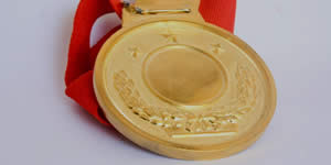 Qual foto merece medalha de ouro por ser a foto mais bela do album?