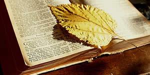 Qual versículo da Bíblia inspira a sua vida?