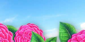 Lindo Mosaico Florido do Salmo 37 com 17 Amigos, Faça o Seu!