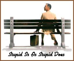 Google Stupid vs Money - Stupid Is as Stupid Does