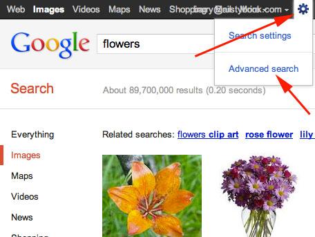 Advanced Google Image Search
