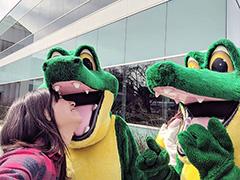 Alligator Mascots At Google