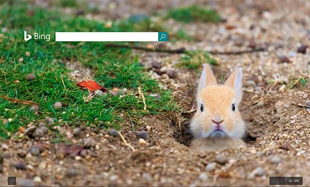 Bing Easter