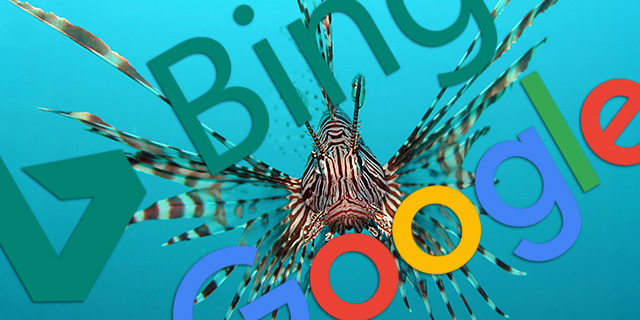 Bing and Google