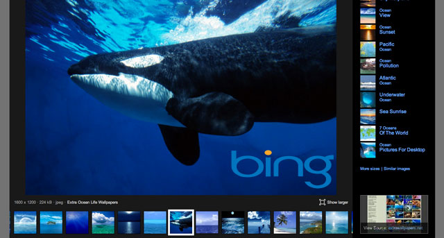 Bing Image Search Update