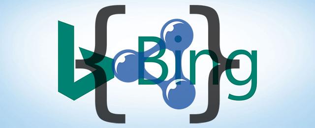 Bing JSON LD
