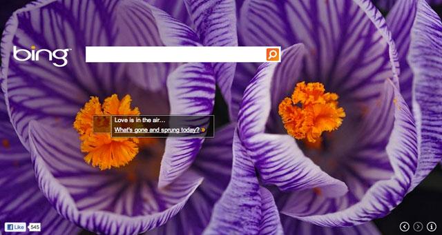 Bing Spring Theme
