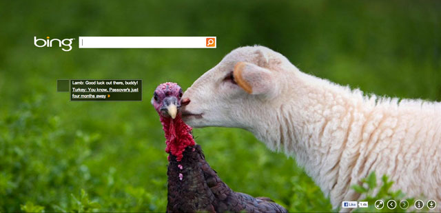 Bing Thanksgiving Day 2012