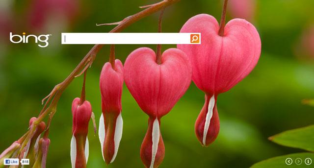 Bing Valentines Logo