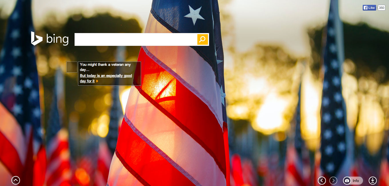 2013 Veterans Day Logos From Google, Bing, Ask & Others