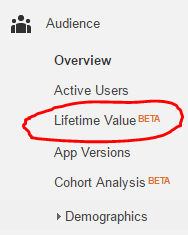 Google Analytics Lifetime Value Report