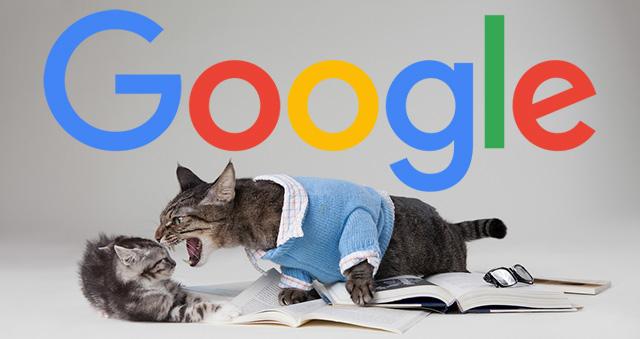 google seo argument