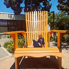 A Big Wooden Chair At GooglePlex