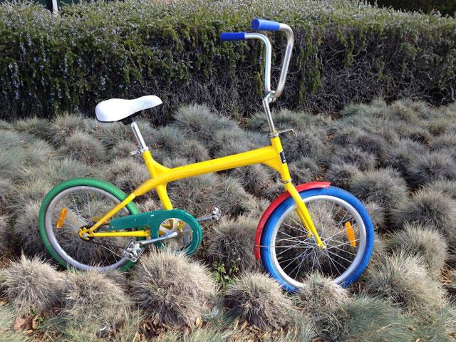 Organic Google Bike